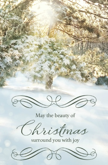 Beauty of Christmas