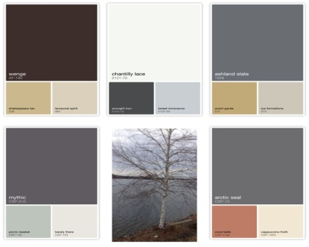 Benjamin Moore Birch Tree