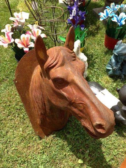 Animal Horse Head