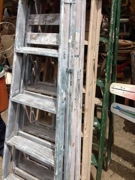 Mint Ladder