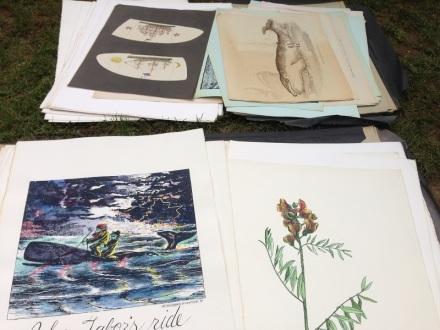 Nantucket Prints
