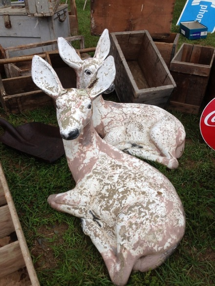 Flea White Deer