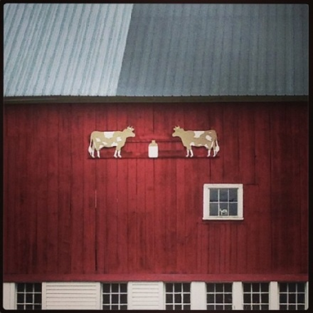 Maine Cow Barn