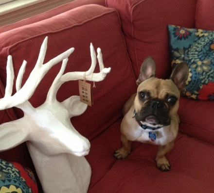 Deer and Bartlet