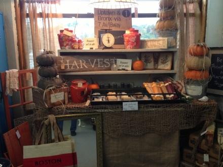 Harvest Thyme