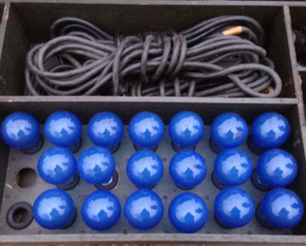 Blue Bulbs