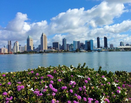 View of San Diego Harbor from Coronado