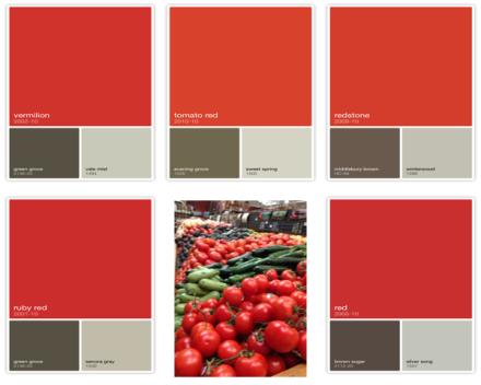 Red Tomato Color Capture