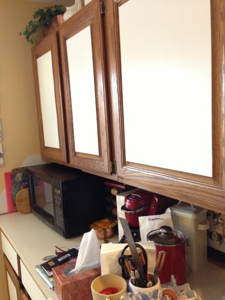 Cabinet Door Before