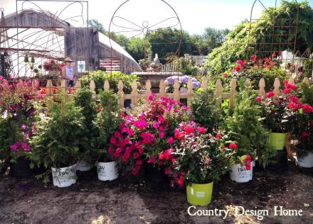 Pettengill Farm Flower Gardens