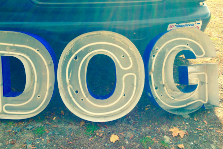 Todd Farm Neon Dog Sign