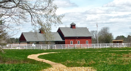 Adams Farm Walpole, MA