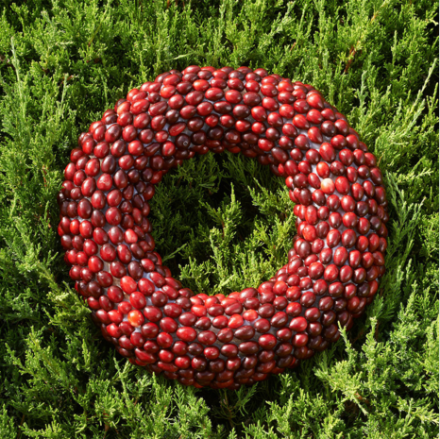 Artful Cranberry Wreath on Evergreens