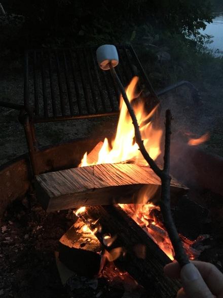 Huttopia Roasting Marshmallows